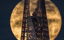 Cuối tháng 1: Siêu trăng, trăng máu, trăng xanh hội tụ lần đầu tiên sau 150 năm, và Việt Nam xem được nhé!