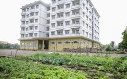 Nhà tái định cư Handico3 bỏ không 10 năm có nguy cơ bị phá bỏ