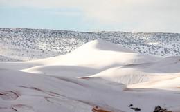 Thế giới lạnh đến mức sa mạc Sahara nóng bỏng cũng bị tuyết phủ tới 40 cm