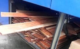 Xe khách chở loại gỗ đặc biệt quý hiếm