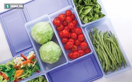 Dùng đồ nhựa mỗi ngày, bạn hiểu đến đâu về khái niệm nhựa tái sinh và nguyên sinh?