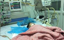 """Vụ tiêm nhầm khiến bé 8 tháng nguy kịch, PGS Nguyễn Hữu Đức: """"Không chỉ là lỗi cá nhân""""!"""
