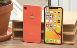 5 lý do có thể thuyết phục bạn không nên mua iPhone XR
