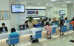 BIDV muốn sửa quy định người đại diện theo pháp luật, tín hiệu sắp có Chủ tịch HĐQT mới?