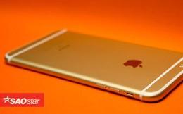 Người dùng iPhone 6 trở lên cần nắm được thông tin này, ai không biết sẽ rất tiếc