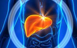 Viêm gan: Phòng ngừa quá dễ, điều trị quá khó
