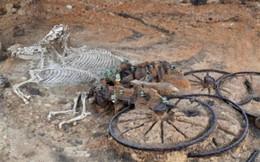 Cận cảnh cỗ xe còn nguyên xác người và ngựa từ 3.500 năm trước