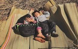Kỳ lạ mà đáng yêu: Hai đứa trẻ trên đỉnh Nhìu Cồ San xem nắng là món quà, giữa trưa trải chiếu ngủ ngoan như mèo con