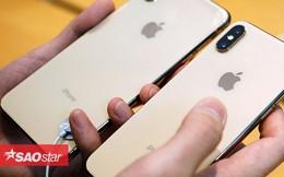 Tôi đã dùng thử cả 7 mẫu iPhone Apple đang bán chính thức, đây là xếp hạng mức độ 'đáng mua' của chúng