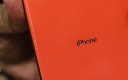 """iPhone XR tiếp tục đón nhận """"tin dữ"""""""