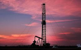 """Tăng sản lượng quá tay, các """"đại gia"""" dầu mỏ làm thế giới ngập trong dầu?"""