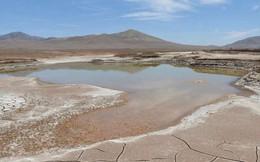 Mưa rơi trên sa mạc: Tưởng may mắn nhưng hóa ra lại là hủy diệt hàng loạt