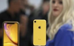 Nếu đang dùng iPhone 6s trở xuống, đã đến thời điểm vàng để bạn nâng cấp chiếc máy của mình