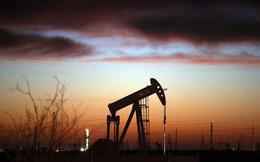 Giá dầu tăng mạnh nhất 8 tuần nhờ tin về cuộc gặp Nga-Saudi Arabia