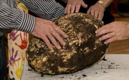 Những hiện vật thực phẩm lâu đời nhất thế giới: Rượu 6.000 năm, bánh mì cũng 140 thế kỷ