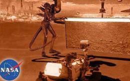 Hay tin NASA đưa tàu thăm dò lên Hỏa Tinh, dân mạng mở ngay cuộc thi chế meme ngoài vũ trụ
