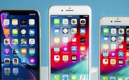 Mua iPhone nào đáng 'đồng tiền bát gạo' nhất năm 2018?