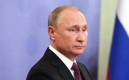 Tổng thống Mỹ, Nga nói gì trong cuộc gặp chớp nhoáng tại bữa tối G20?
