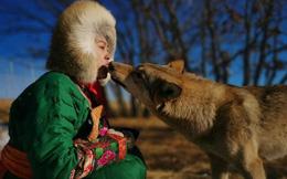 Cô gái Mông Cổ với dàn thú cưng độc 8 con sói, 3 bạn trai đều đòi chia tay vì sợ cãi nàng sẽ bị ăn thịt