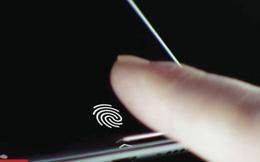 Apple nhiều khả năng sẽ trang bị cảm biến vân tay dưới màn hình trên thế hệ iPhone mới