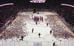 Clip: Cổ động viên hò hét rồi ném 34 nghìn con gấu bông xuống sân hockey và câu chuyện đầy cảm động phía sau