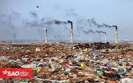 Giật mình 15 bức ảnh 'tố' con người đang rất tàn nhẫn với Trái đất