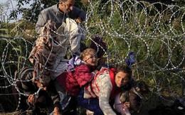 Ngay trước ngày ký kết, nhiều quốc gia 'nối gót' Mỹ rời bỏ Hiệp ước Di cư toàn cầu