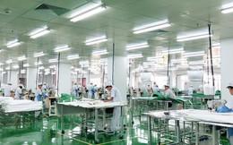 An Phát Holdings 'âm thầm' bắt tay với VinFast thành lập một công ty sản xuất phụ tùng?