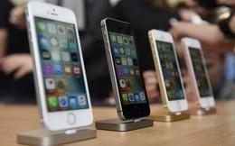 Giữa lúc Mỹ bắt bí Huawei thì Trung Quốc cấm bán iPhone, chuyên gia nhận định có thể đây là 'chiêu bài chính trị'