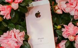 Đây là sai lầm lớn nhất Apple đã mắc phải trong năm qua với iPhone