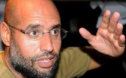 'Con trai ông Gaddafi là một phần trong tiến trình chính trị ở Libya'