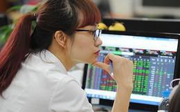 Đà tăng lan rộng thị trường, Vn-Index bứt phá gần 15 điểm sau chuỗi 10 phiên giảm liên tiếp