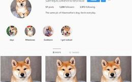 Những tài khoản Instagram dị đến phát hờn: Cả đời chỉ đăng lặp lại liên tục một ảnh y hệt nhau!
