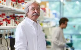 """Phương pháp trị ung thư đột phá nhờ tế bào """"người lạ"""""""