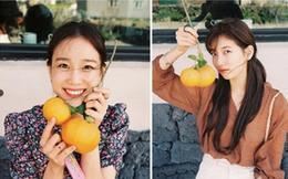 """Ở Hàn có một loại quả quý như vàng thuộc hàng """"quốc bảo"""", chỉ trồng một cây cũng đủ nuôi con thành tài"""