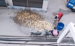 """Chở cá chép đi bán thì bị đổ giữa đường, hình ảnh """"đắng"""" nhất trong ngày ông Công, ông Táo"""
