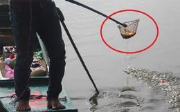"""Bị ghi hình bắt cá cúng ông Công ông Táo, thanh niên lớn tiếng: """"Dẹp hết mấy cái máy đi, nói nhẹ không nghe à"""""""