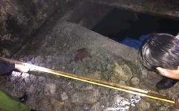 Quảng Trị: Làm rõ nguyên nhân bé trai 6 tuổi tử vong dưới bể phốt
