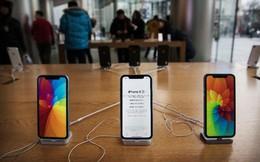 Apple thất bại hoàn toàn tại Ấn Độ, doanh số iPhone sụt giảm một nửa, Xiaomi vượt mặt Samsung để đứng số 1