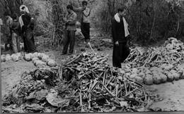 Chuyện làm phim về Khmer Đỏ: Hãy để những hình ảnh khủng khiếp này nói lên sự thật