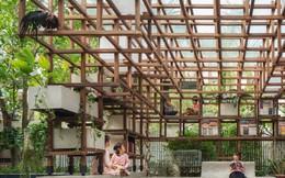 Công trình vườn - ao - chuồng của Hà Nội lên báo ngoại