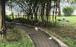 Gia cảnh đáng thương của người phụ nữ tử vong trong vườn hoa Hà Đông