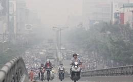 Bộ Tư pháp nói gì việc báo cáo Quốc hội số liệu ô nhiễm từ... 14 năm trước?