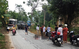2 vợ chồng bị xe tải cán qua người sau khi đâm phải chó thả rông, ngã xuống đường