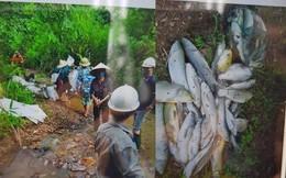 Điểm danh những khu vực ở Hà Nội đang dùng nước sông Đà