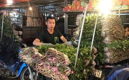 Dân buôn chợ Quảng An mỏi tay đếm tiền nhờ hoa hồng tăng giá ngày 20/10