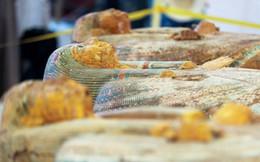 Nhà khảo cổ học phát hiện 20 cỗ quan tài Ai Cập cổ đại: Được bảo quản tốt hiếm có