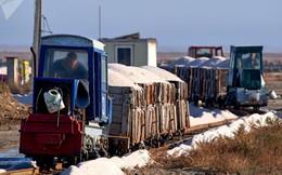 """""""Săn"""" muối hồng tại Crimea"""