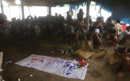 Cảnh sát vây bắt, hàng trăm con bạc băng ruộng bỏ chạy