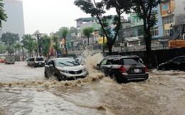 Tạp chí Nature: TP.HCM và hầu hết miền Nam Việt Nam sẽ chìm dưới nước sau 31 năm nữa